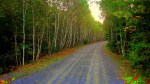 St Margarets Bay trail