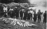 1960-Salmon Fishing