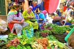 1973-berber-vendors
